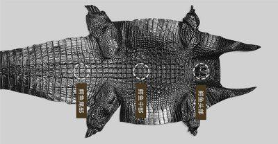 crocodile skin watch straps