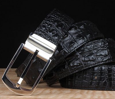 Features of Alligator Belts