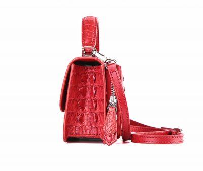 Crocodile Clutch Evening Bag, Handbag, Crossbody Bag-Side