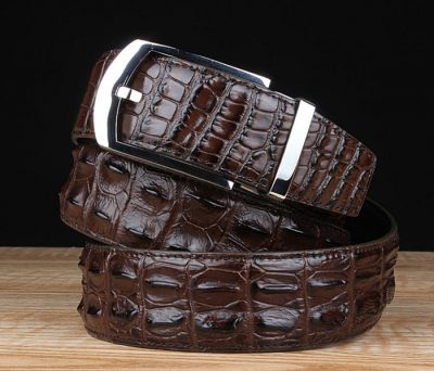 Features of Crocodile Belts
